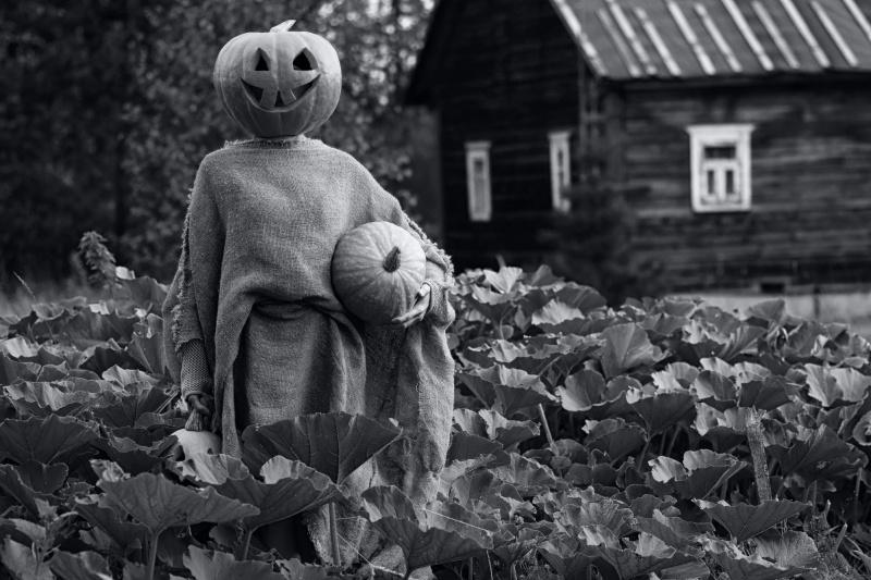 かぼちゃのフェイスペイント
